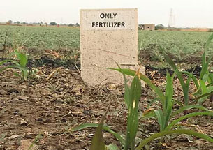 100% Fertilizer