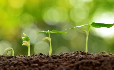 WellCrop: Farming As Nature Intended